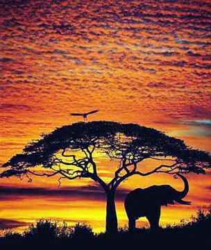 sunsetb